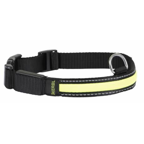 Flashing Collar Light & Reflex 45-63cm