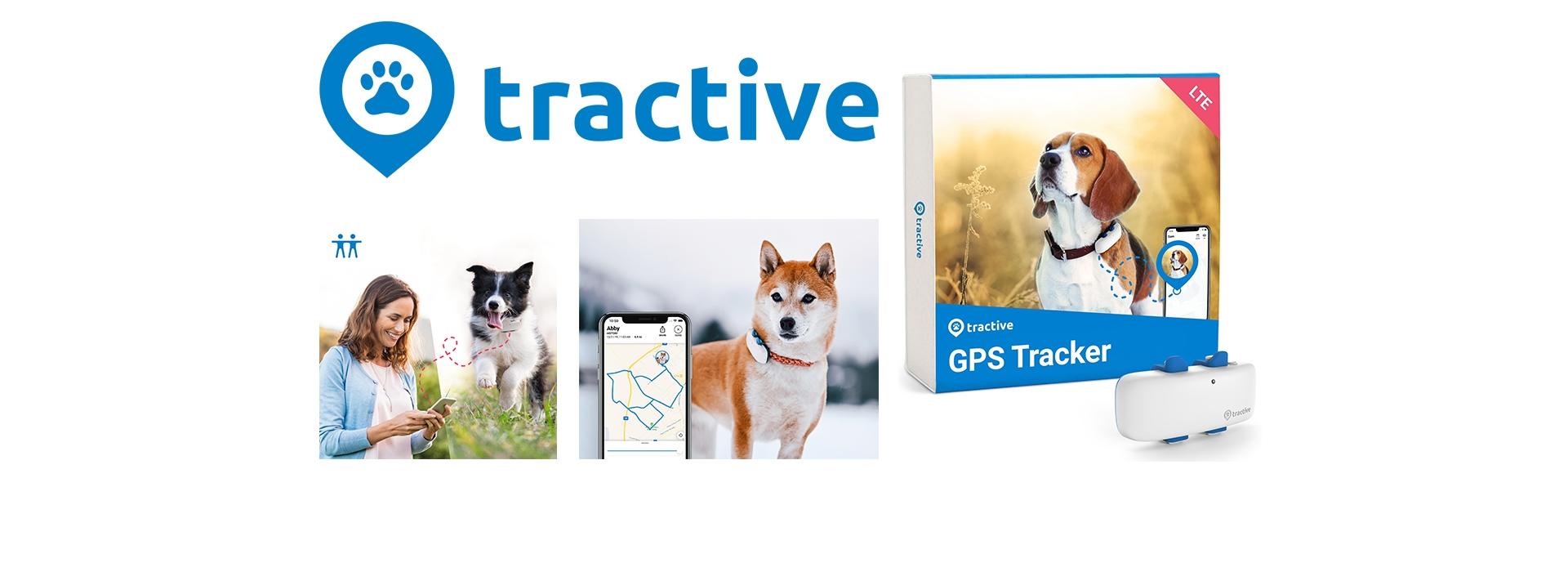 Tractive kutya gps